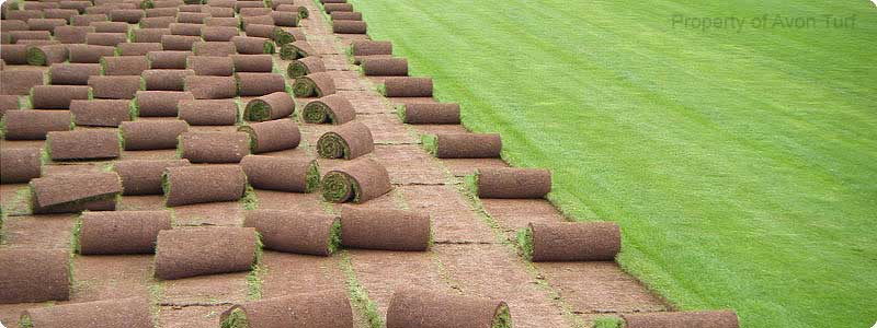 Avon Turf Contractors Supply Lawn Turf And Top Soil In